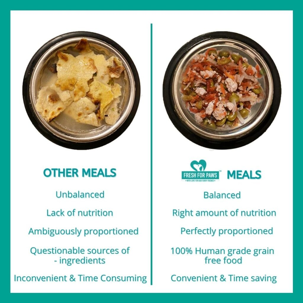 Why Choose fresh for paws